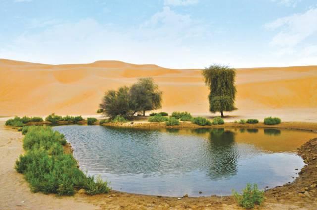 9. Liwa Oasis สหรัฐอาหรับเอมิเรตส์